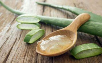 15 utilisation surprenantes de l'Aloe vera